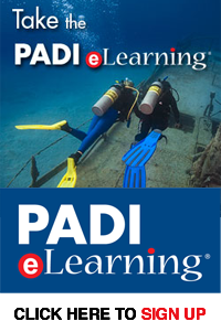 dive courses padi elearning