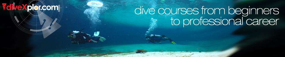 Diving is a passion and we love diving